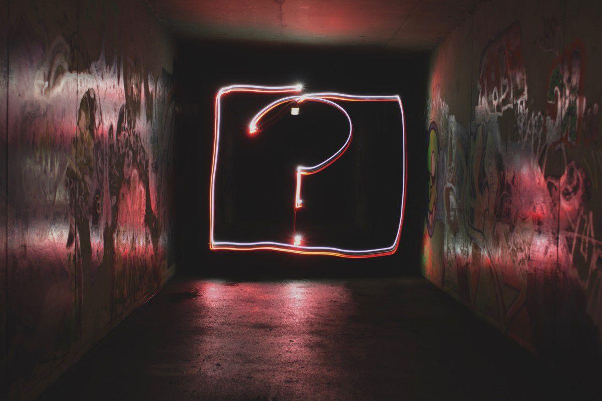 Hvem skal hoste din hjemmeside?
