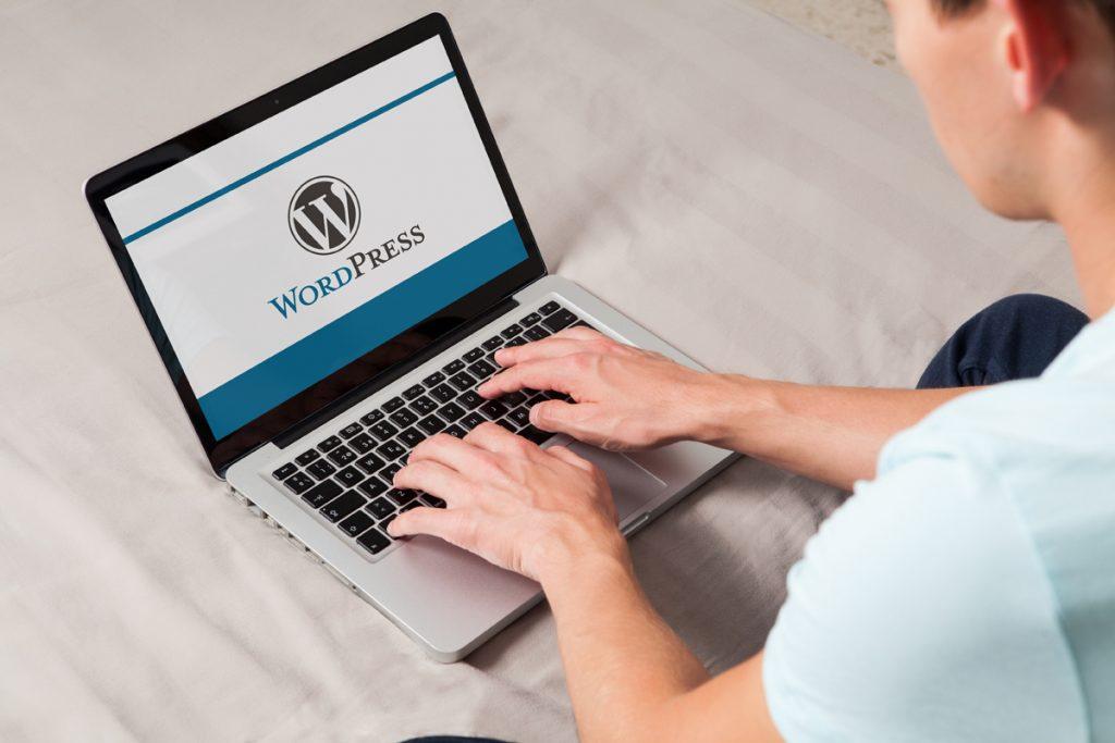 hjemmeside i wp