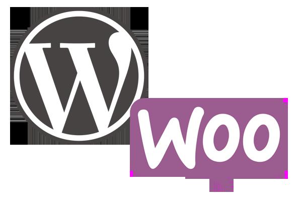 hvad koster en webshop