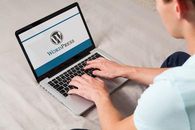 Wordpress-hjemmeside